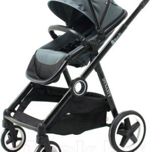 Детская прогулочная коляска Babyzz Dynasty