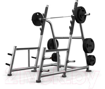 Силовая рама Matrix Fitness Magnum A81-03