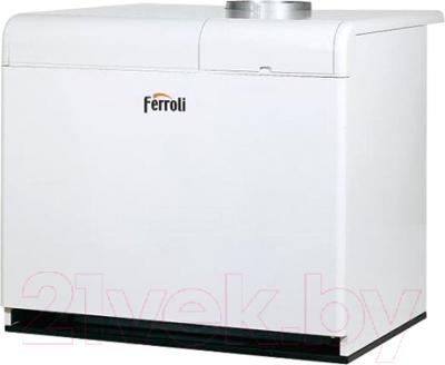 Газовый котел Ferroli Pegasus F3 N 119 2S